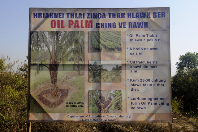 Oil palm promotional poster along the highway near Lengpui airport.