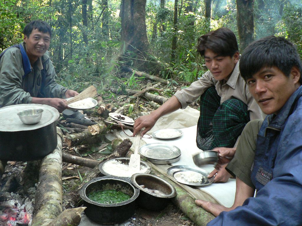 meal in forest