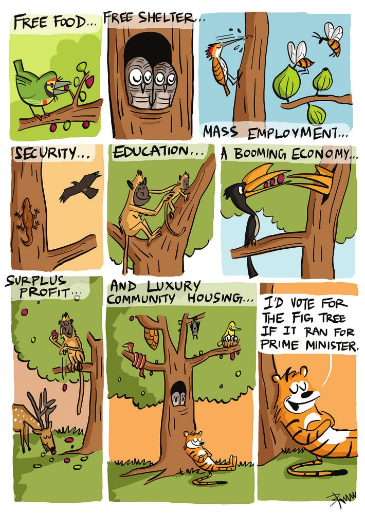 What figs provide - cartoon by Rohan Chakravarty