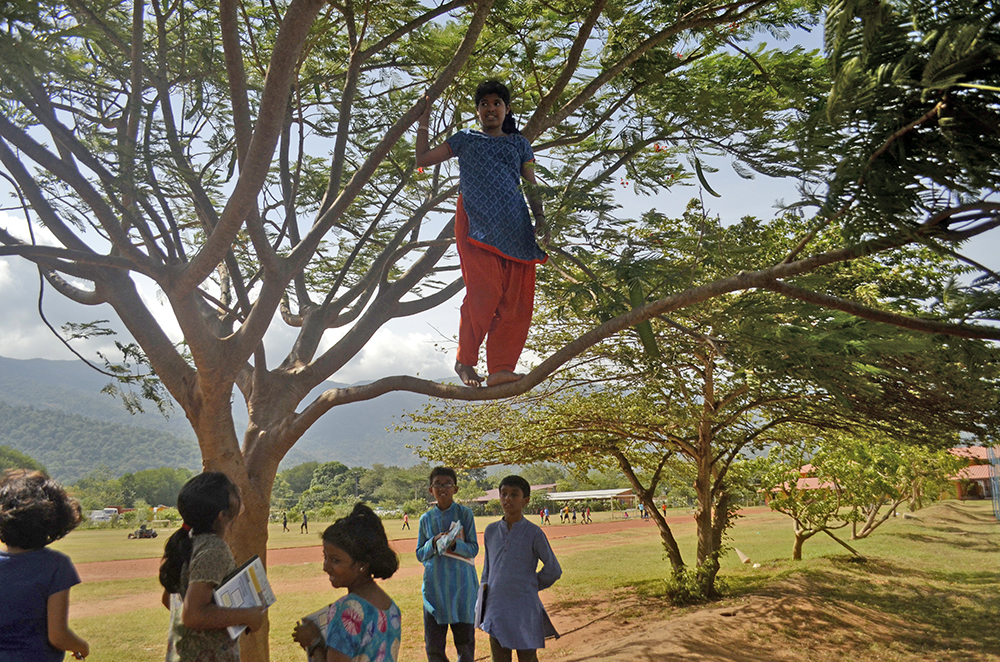 isha-home-school-students-choosing-tree-for-sw